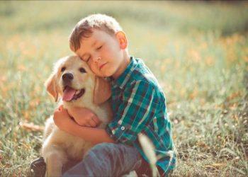 TDAH y terapia con animales
